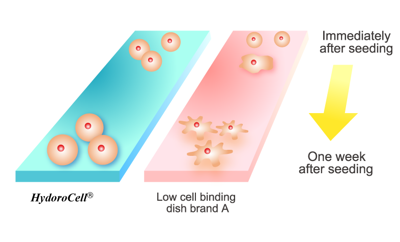 HydroCell surface designed to prevent cell attachment