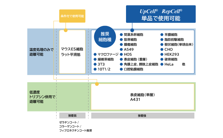 UpCell®の適用細胞種